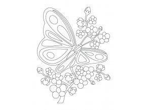 Větvička s motýlkem
