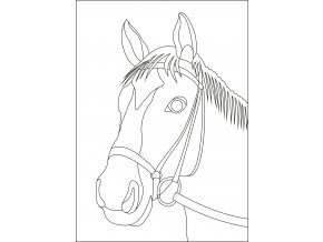 Šablona Hlava koně