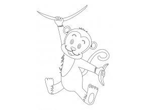 Šablona Opička