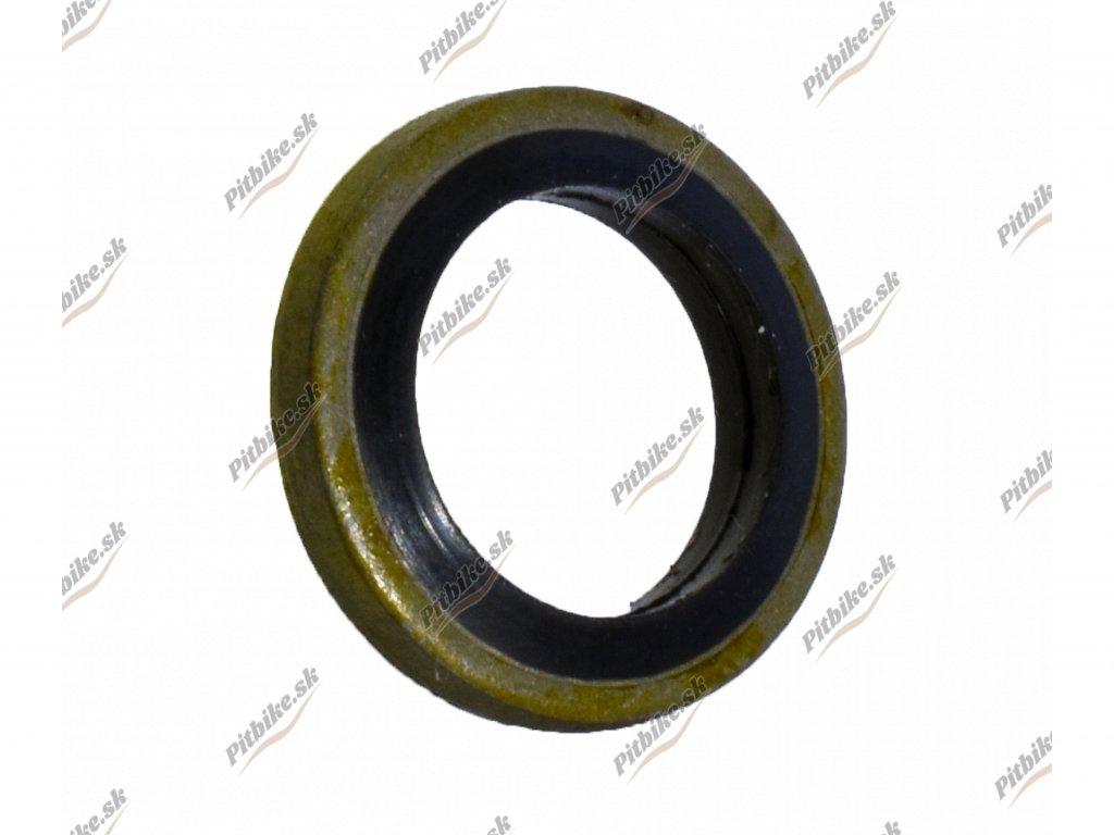 Tesnenie holendra 10mm 7723100553124 (1)