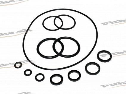 Tesnenie motor gumičky 7723100535601 (4)