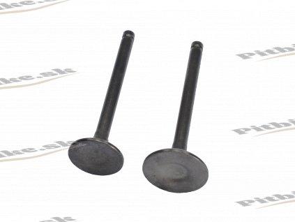 Ventily 20mm 23mm 110cc 7723100538473 (2)