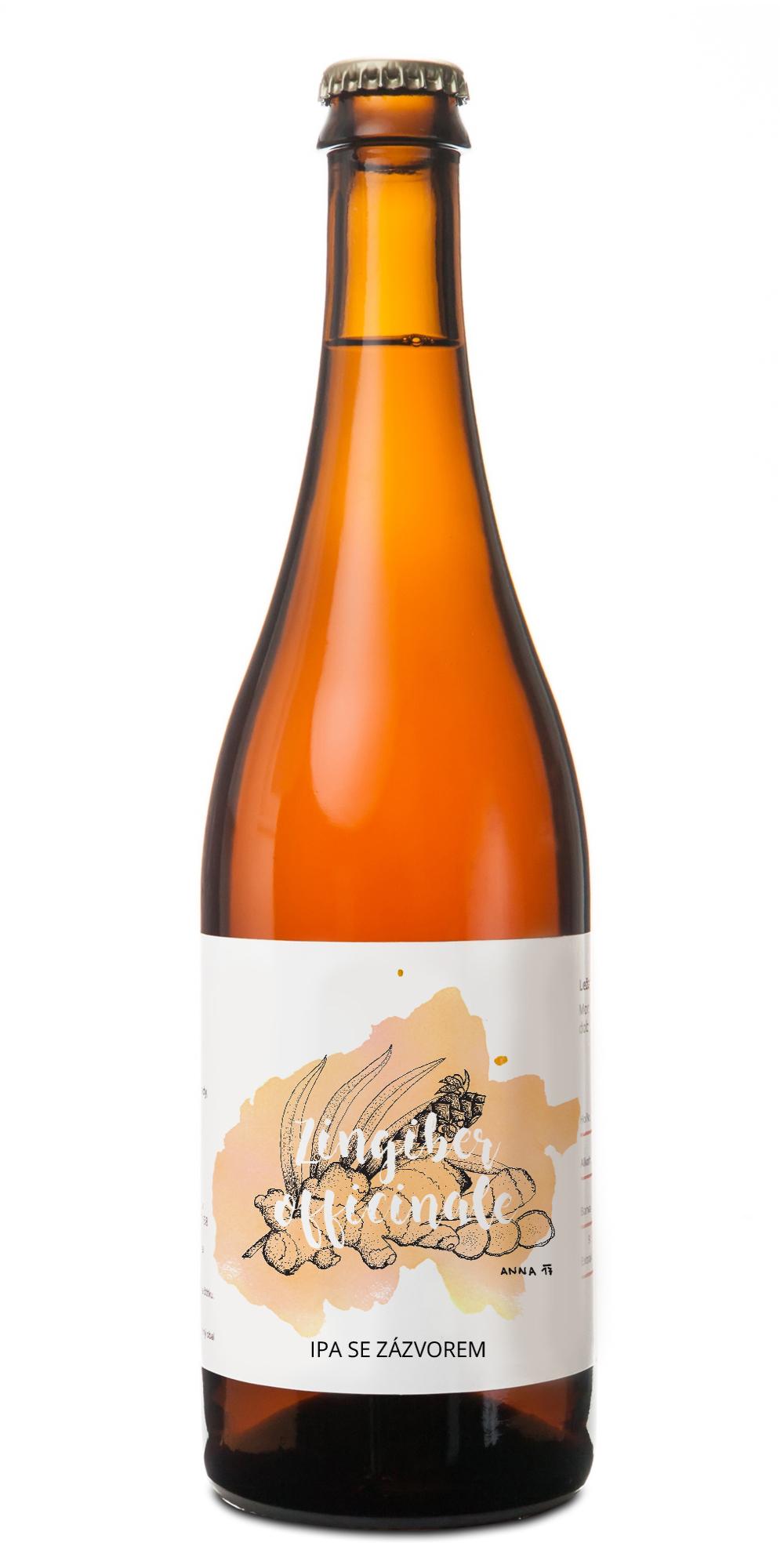 pivovar pivečka lahev Zingiber officinale