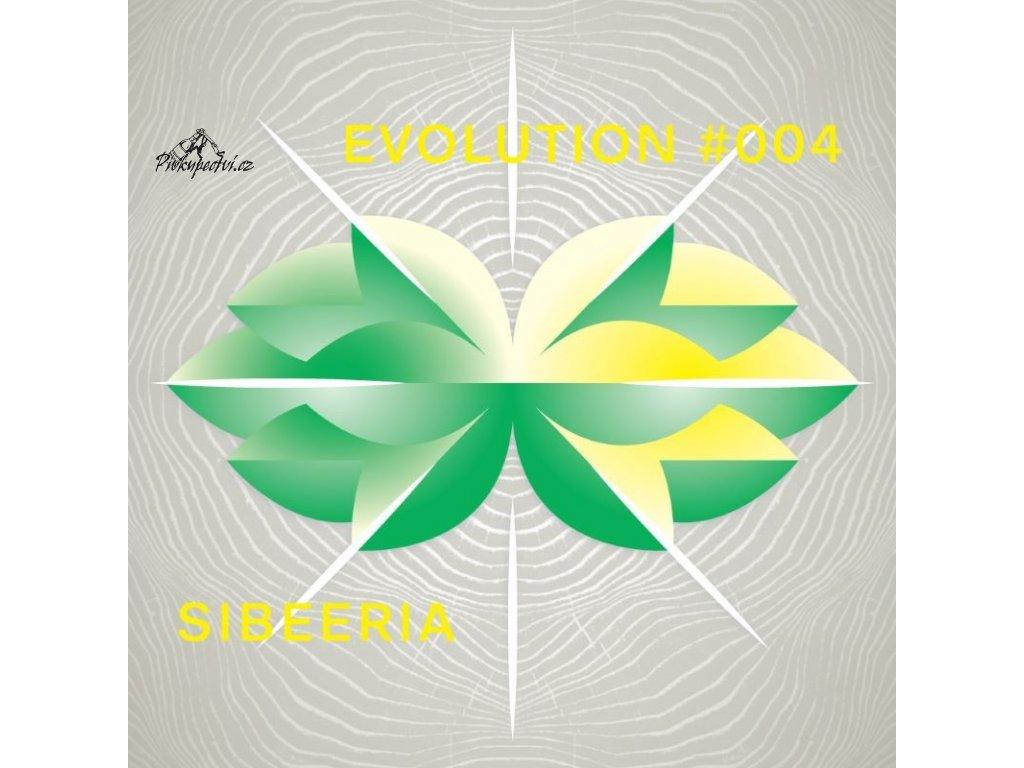 evolution 004