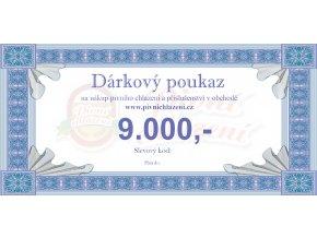 Dárkový poukaz 9.000,-