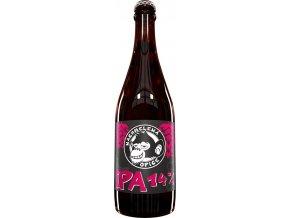 beer 383485