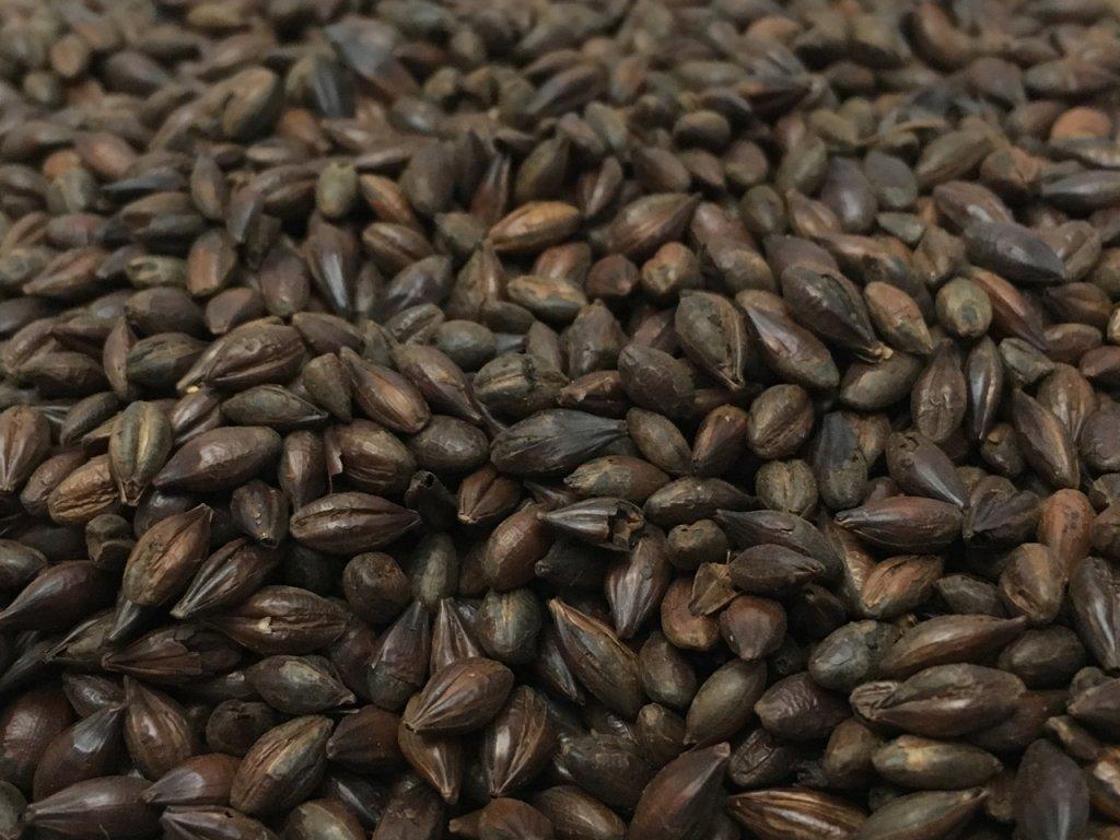 Weyermann® Pražený ječmen, Roasted Barley