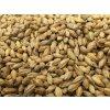Weyermann® Nakuřovaný slad, Beech Smoked Barley Malt