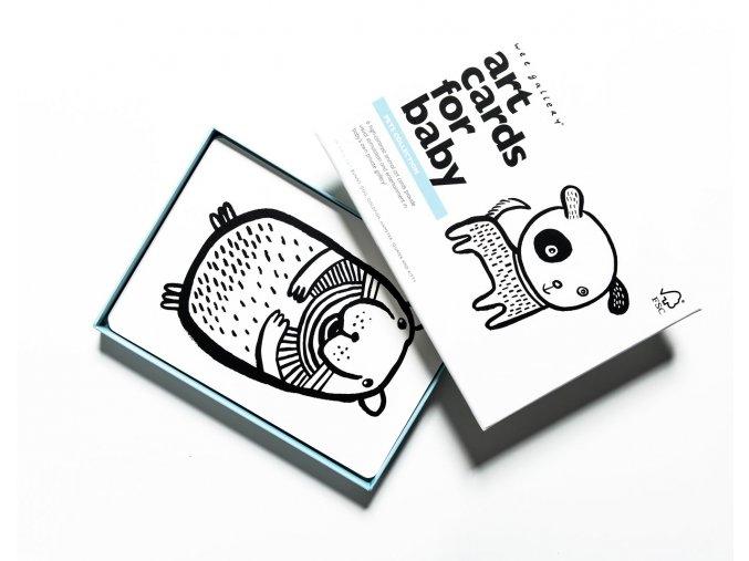 Wee Gallery Art Cards Pets - kontrastné kartičky