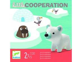 Djeco Ľadové kryhy - Spoločenská hra pre najmenších