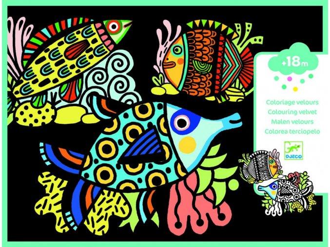 Djeco Sametové malování - Krásné rybky