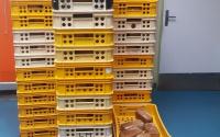 nové podvozky pro pekařství Vašíček
