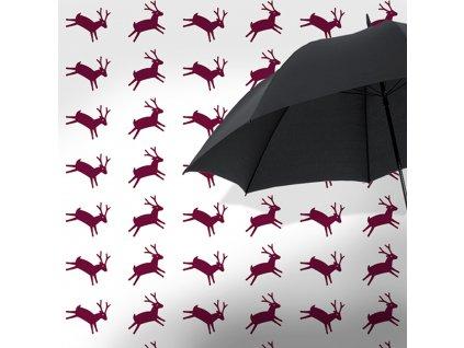 deer 03 1