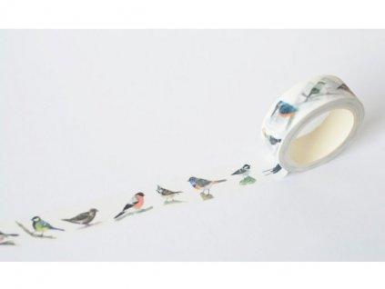 5333 1 washi ptacci5(1)
