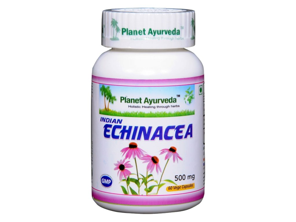Indian Echinacea