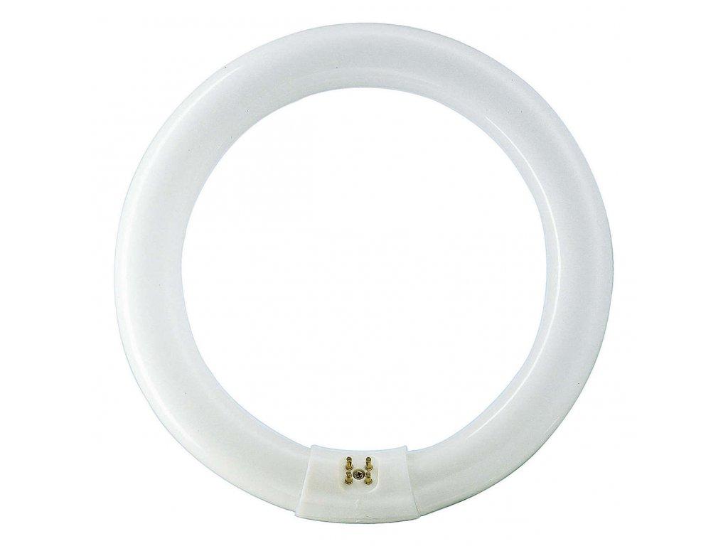 Žiarivka 32W/865 G10Q kruhová 29x307mm