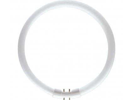 LEDVANCE Žiarivka 55W/840 2GX13 T5 studená kruhová 16x300mm