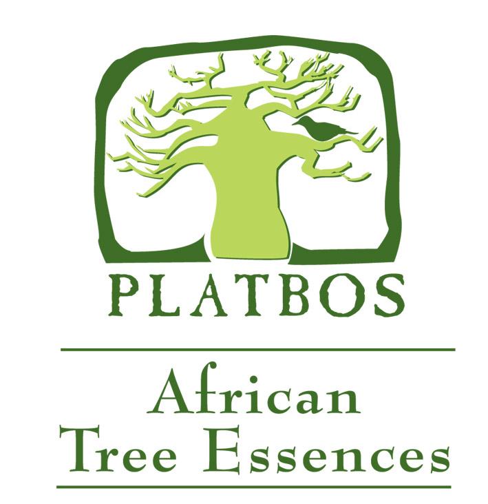africanessence_logo
