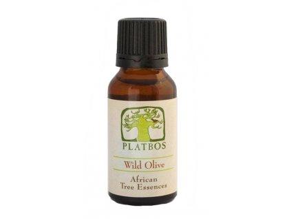 wild olive esence