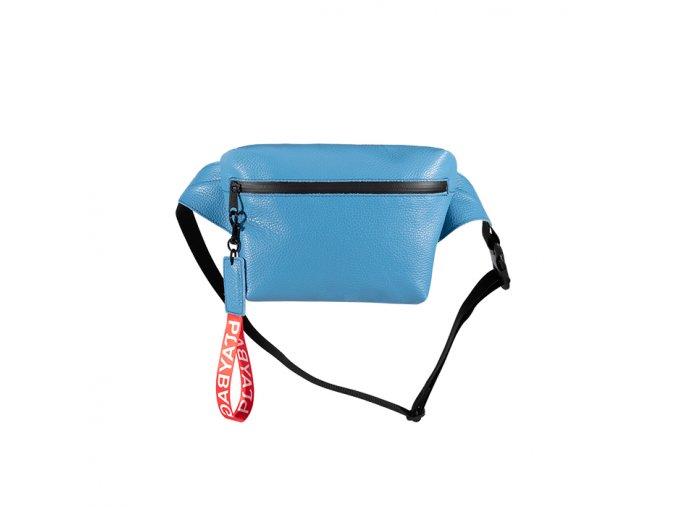 Ledvinka modrá1 700