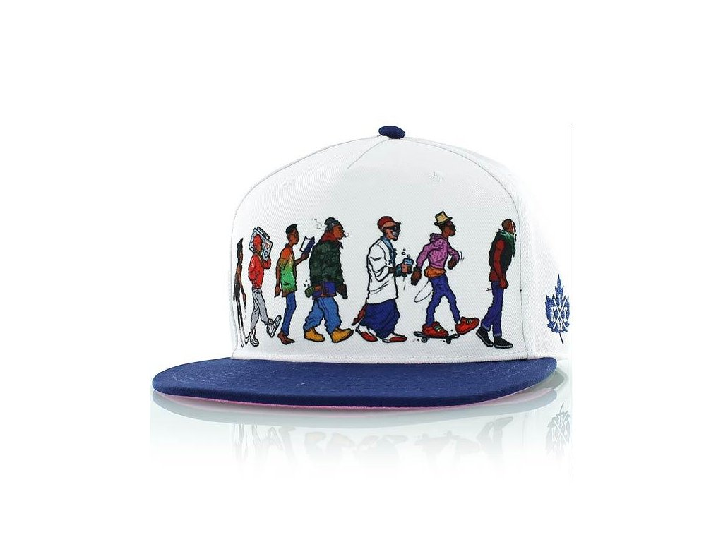 darwin hip hop snapback cap