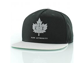 park authority snapback cap