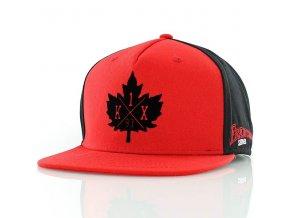 franchise snapback cap