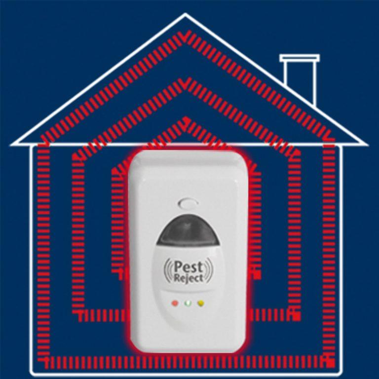 Pest-Reject-5_2048x-768x768