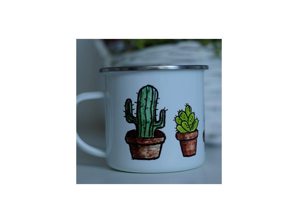 kaktusy1