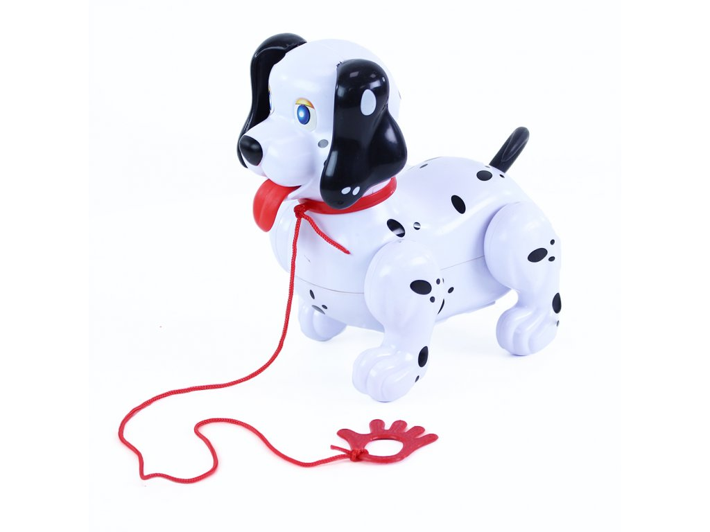 Pes chodící se zvukem a vodítkem