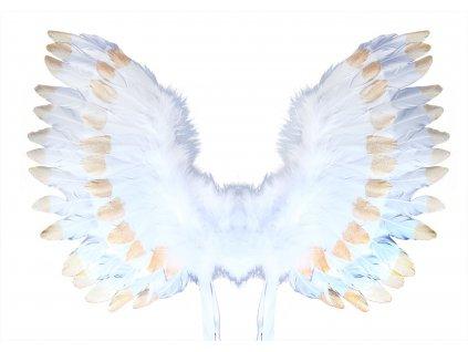 Andělská křídla s peřím bílo-zlatá
