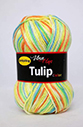 Tulip color