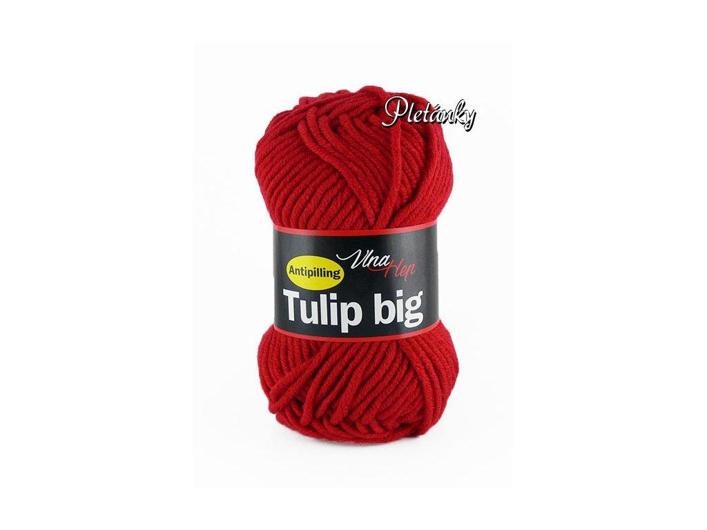 Příze Tulip Big 4019