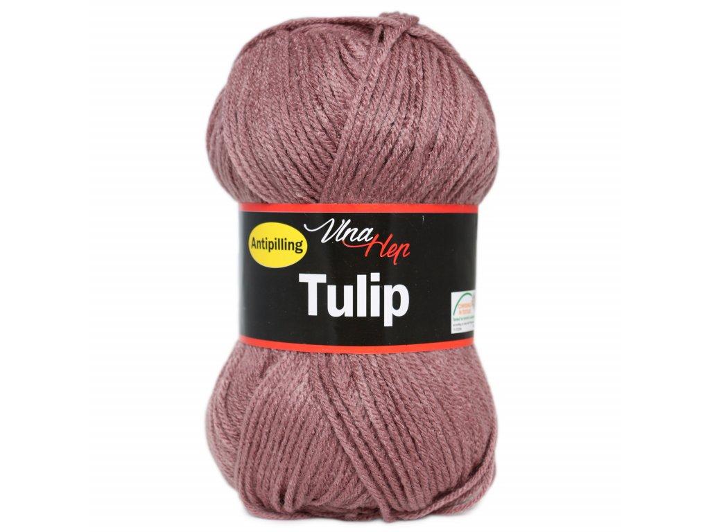 tulip4077