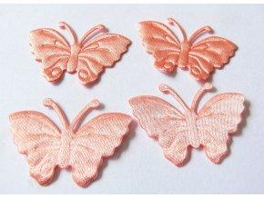 Aplikace motýl 19175 - lososová