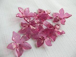 Květ plast 29mm TRANSPARENT 200430 - vínová fuchsie 12