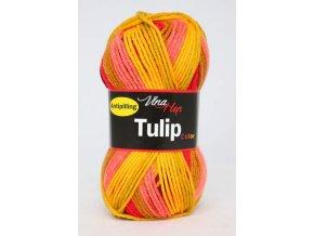 Tulip color 5206