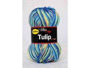 Tulip color 5603