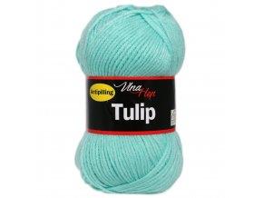tulip4136