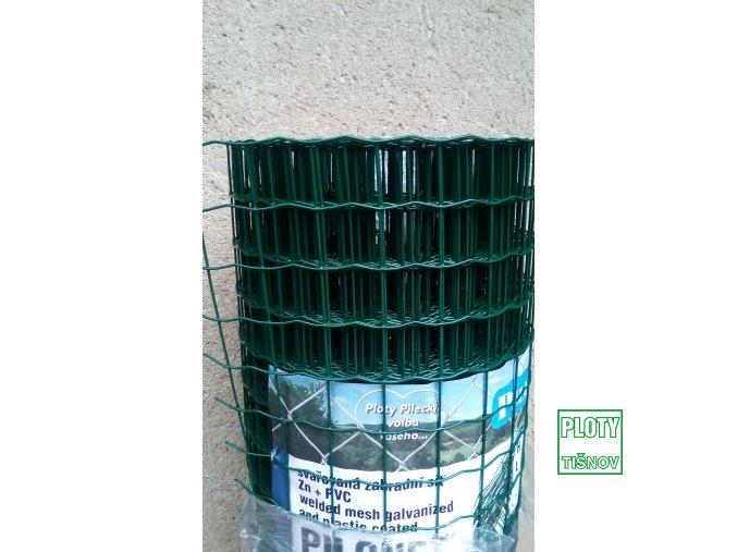 Poplastované svařované  pletivo  Pilonet  Heavy 200 cm