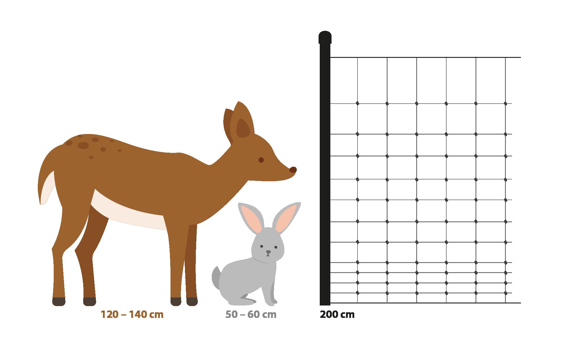 plot_zvířata