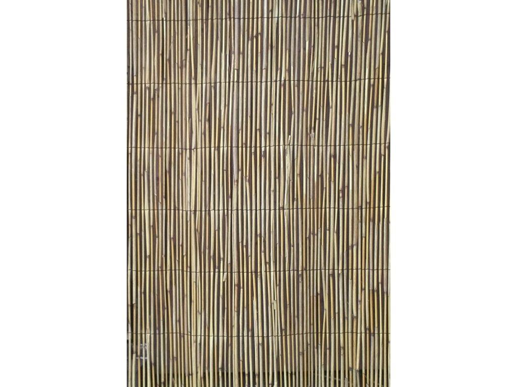 Rohož z rákosia, výška 200 cm, 5 metrov