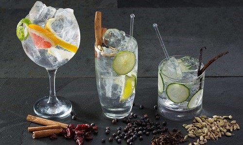 Gin stonikem, komáři utočí