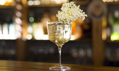Gin & Flower