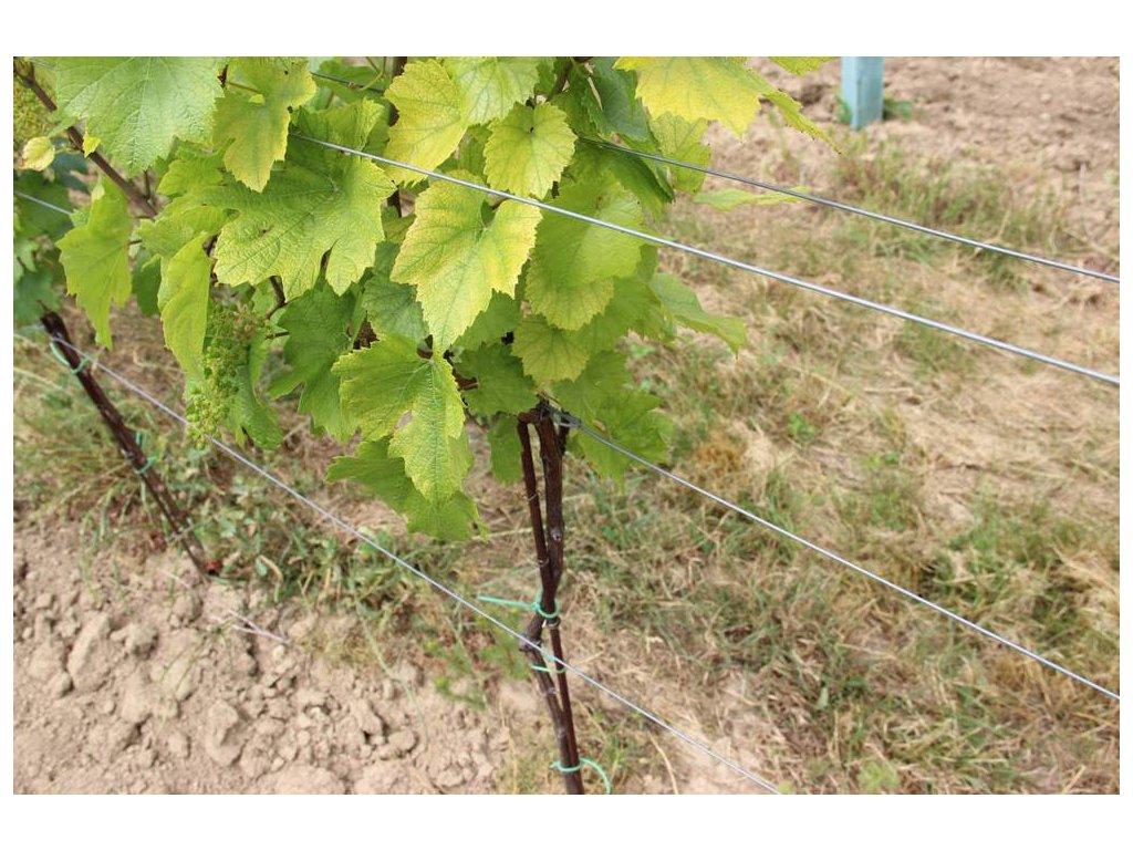 Drát vinohradnický Zn 2,0mm, 25kg