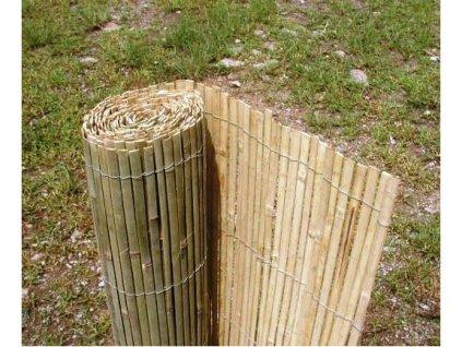 stipany bambus