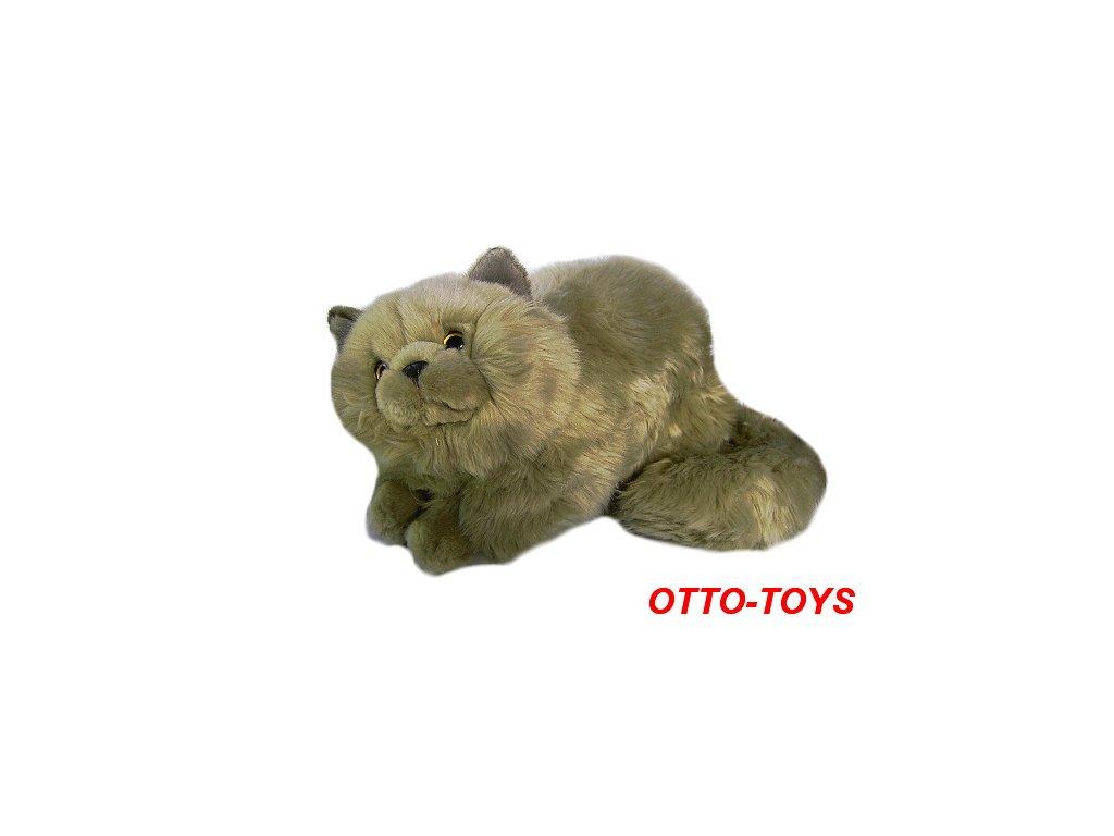 www velká kočička