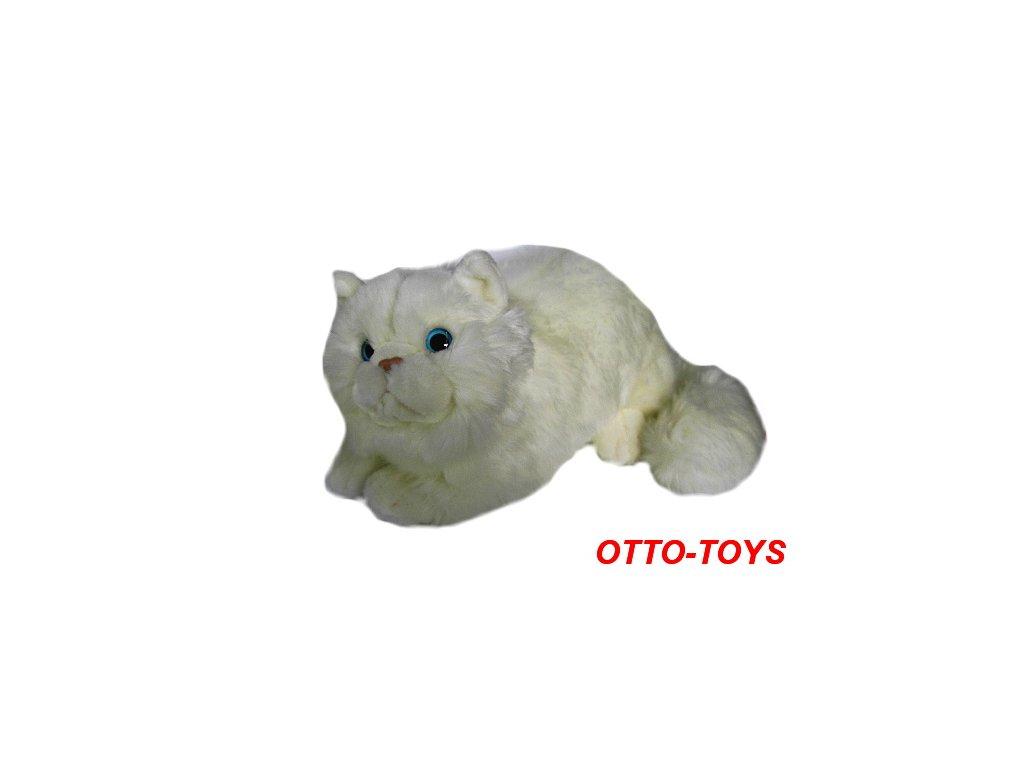 Malá velká kočička