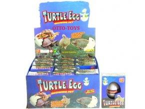 Líhnoucí vajíčko želva