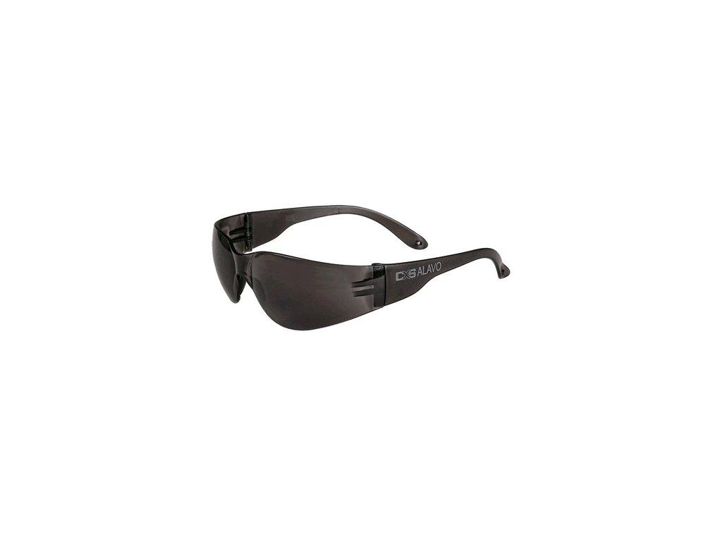 Brýle CXS-OPSIS ALAVO, kouřové